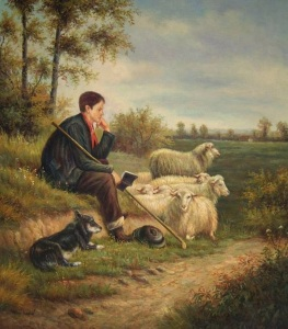 57075-sheep_with_shepherd_and_bc